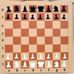 Демонстрационные настенные шахматы