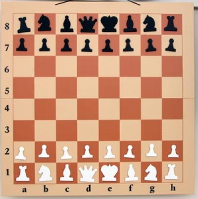 Доска шахматная демонстрационная (82 х 82см)
