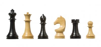Шахматные фигуры DGT FIDE
