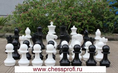 Гигантские шахматы 16