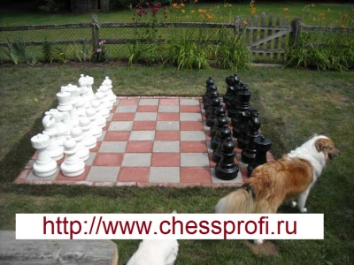 Гигантские шахматы (Фигуры) - Размер 25