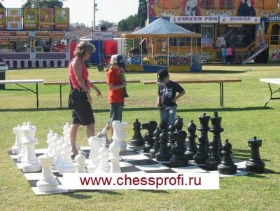 Гигантские шахматы 25