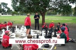Гигантские шахматы (Фигуры) - Размер 25`` Средний Стандартный