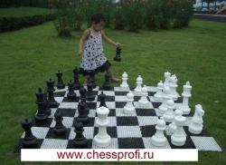 Гигантские шахматы 12